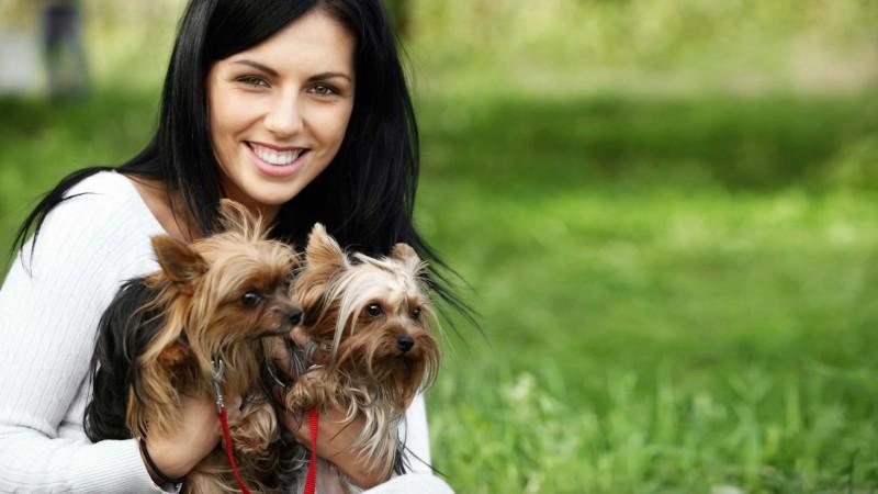 Traslado de Mascotas; Traslado de Perros; Transporte de Mascotas; transporte de Perros; Animal Cargo